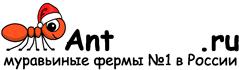 Муравьиные фермы AntFarms.ru - Белгород